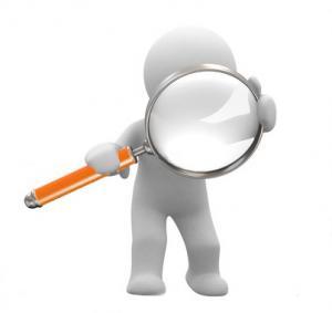 resizedimage300283-audit